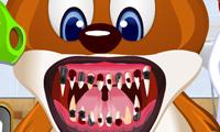 Стоматолог и животные